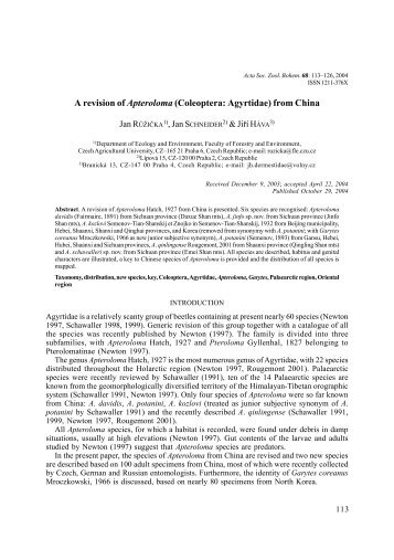 A revision of Apteroloma (Coleoptera: Agyrtidae) from China