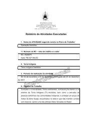 Relatório de Atividades Executadas – Instrucional e Modelo ... - Funai