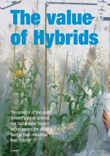 Download: ( 586 KB pdf) - Bayer CropScience Mexico