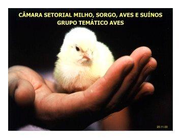 c‰mara setorial milho, sorgo, aves e suènos grupo temêtico aves c ...