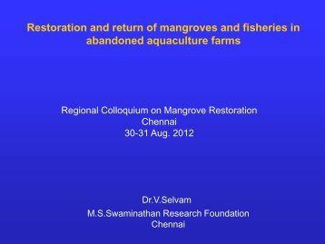 Restoration and return of mangroves and fisheries in abandoned ...