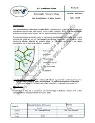 Neu-20 Enfermedades Pulmonares Difusas_v0-0.pdf - osecac