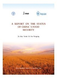 China - A Report on the Status of China's Food Security