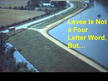 Dealing with Levees in the Absence of National Policy