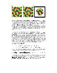 Orientation contrast sensitivity from long-range interactions in visual ... - Page 3