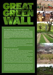 Our dream: The Great Green Wall of Africa What do ... - Climate Centre