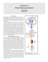CHAPTER 11 Pain Management - Global HELP