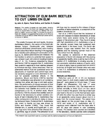 ATTRACTION OF ELM BARK BEETLES TO CUT LIMBS ON ELM1