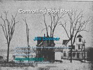 Controlling Root Rots