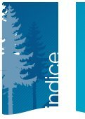 Plan Provincial de Acuicultura - COPADE - Page 4