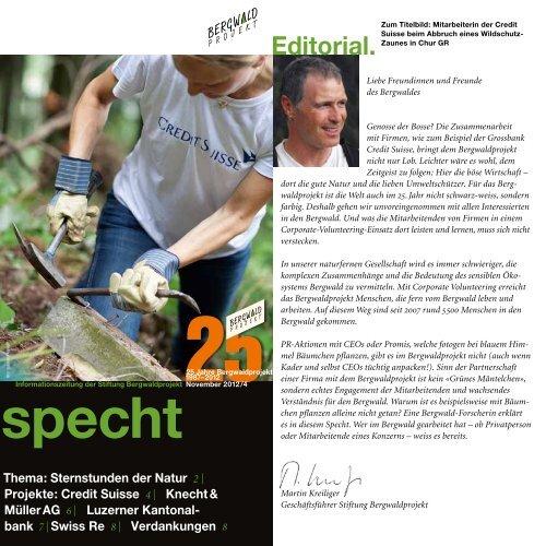 Corporate Volunteering - Bergwaldprojekt