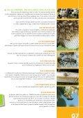 Voyage au coeur du miel - CARI - Page 7