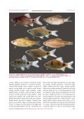 Download - Journal of Threatened Taxa - Page 5