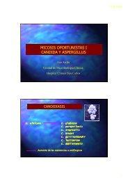 micosis oportunistas i candida y aspergillus - micromadrid