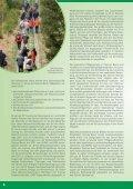 Biotopmanagement im Grünen Band - Grünes Band - Seite 6