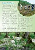 Biotopmanagement im Grünen Band - Grünes Band - Seite 7