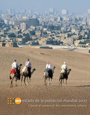 Informe - UNFPA Argentina