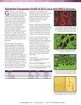 Dopamine Receptors - Page 7