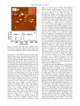 Long Term DNA Degradation - DEPARTMENT OF PHYSICS - Boise ... - Page 4