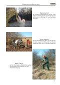 Beispiele von Biotopschutzeinsätzen 2006 - BUND Kreisgruppe ... - Seite 5