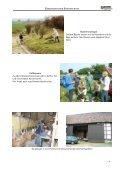 Beispiele von Biotopschutzeinsätzen 2006 - BUND Kreisgruppe ... - Seite 6