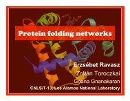 Protein folding networks - Erzsébet Ravasz Regan