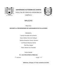 Encuesta - Universidad Autónoma de Chiapas
