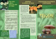 Funghi - Asl Como