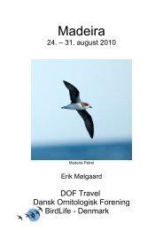Madeira - DOF Travel