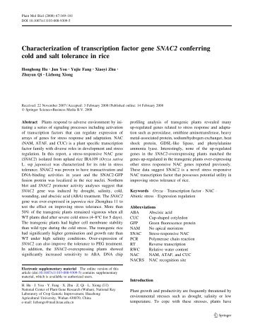 Characterization of transcription factor gene SNAC2 ... - NCPGR