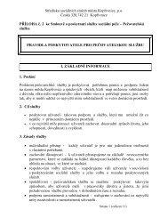 Pravidla pro poskytování sociální služby - Středisko sociálních ...