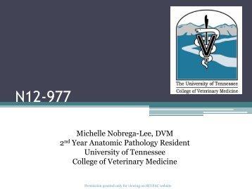 N12-977 - University of Georgia College of Veterinary Medicine
