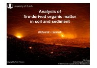 Analysis of fire-derived organic matter in soil and sediment