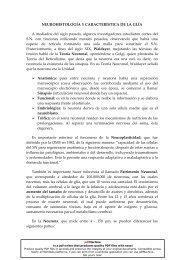 NEUROHISTOLOGÍA Y CARACTERÍSTICA DE LA GLÍA A mediados ...
