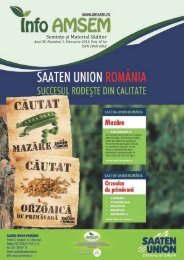 Revista Info-AMSEM Nr. 1 / 2013