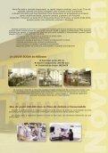 pagini tot_g1_Layout 1 - NOVA PAN - Page 3