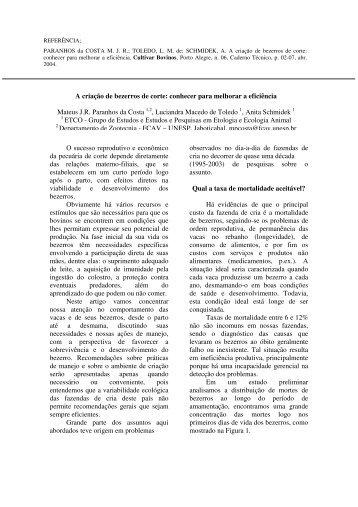 O sucesso reprodutivo e econômico da pecuária de corte ... - ETCO