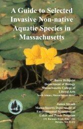 Aquatic Invasive Species Guide (PDF)