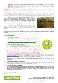 Listado-alimentos-transgenicos - Page 3