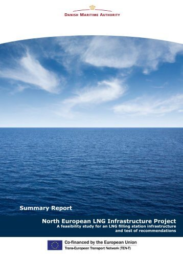 Summary Report - Danish Maritime Authority