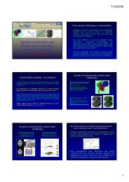 Spatial conformality and volume-effect modelling