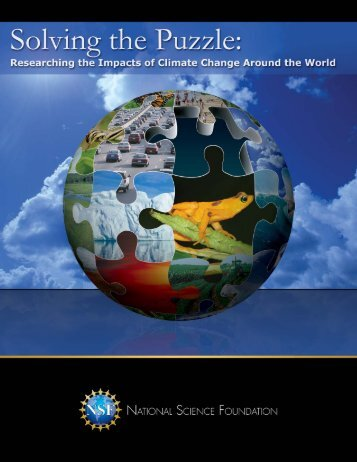 NSF 09-202 - ICCIP the International Climate Change Information ...