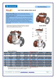 Series 300 B CAST STEEL SWING CHECK VALVE ... - COMEVAL