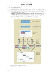 DNA-sekvensanalyse