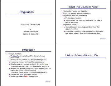 Regulation - Network Economics and Services Group