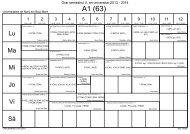 semestru II 2012-2013.roz