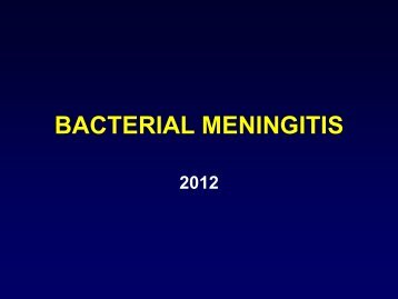 Bacterial Meningitis - Infectious Diseases