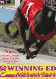 February'08 - Greyhounds Queensland