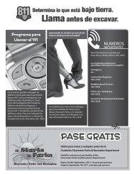 Diversiones - Informe (Newsletter)