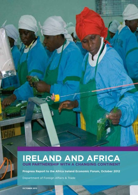 Progress Report to the Africa Ireland Economic Forum - Irish Aid